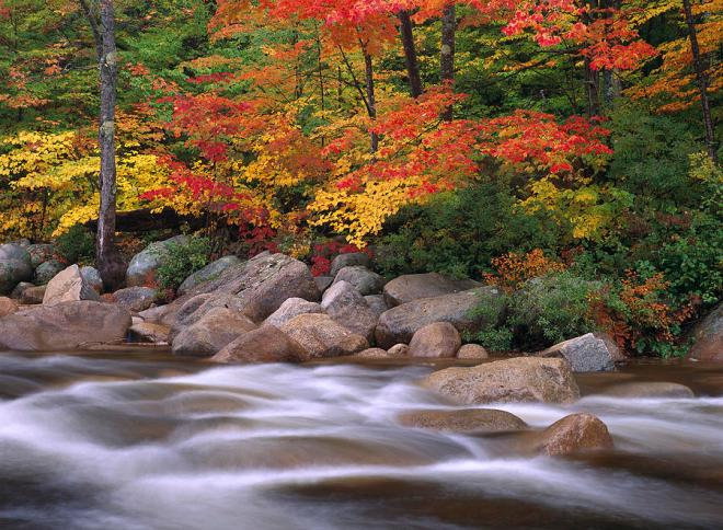 autumn-along-swift-river-tim-fitzharris