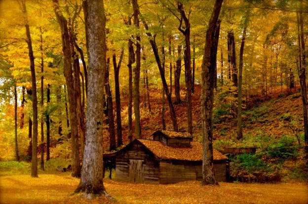 Vermont.com-Foliage-Sugar-House-624x414