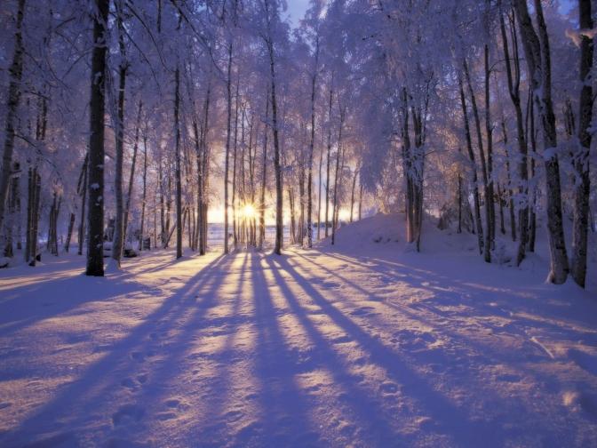 winter-scene-053